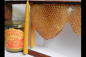 Honig und Licht