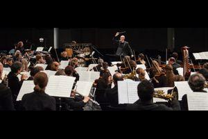 Basel Sinfonietta | Baldur Brönnimann | Solisten - abgesagt