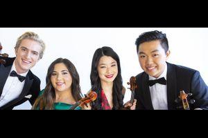 Viano String Quartet - abgesagt