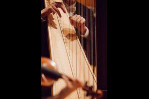 Sinfoniekonzerte 2019/20