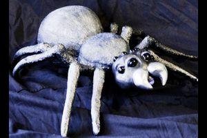 Otto, die kleine Spinne