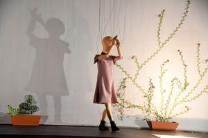 """Absage: Salzburger Marionettentheater: """"Fidelio"""""""