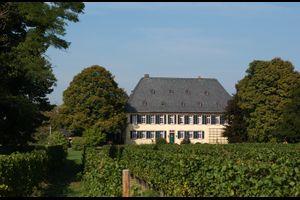 Absage: Fahrende Musiker in Weingütern