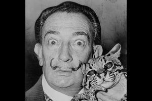 """Ein """"irrer"""" Maler. Kinder entdecken Salvador Dalí"""