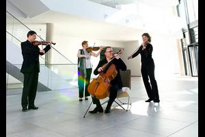 DMR PM Klingendes Miteinander: Deutscher Musikrat begrüßt den Verband der Streichquartette und weiterer Kammermusik-Ensembles VdSQ e.V. als neues Mitglied