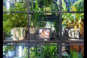 """Aktivierung von Rashid Johnsons Installation """"Antoine's Organ"""""""